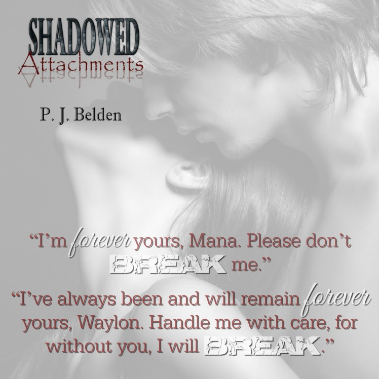 Shadowed Attachments teaser 2